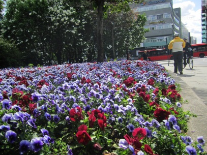 Flowers next to Nationalteateret