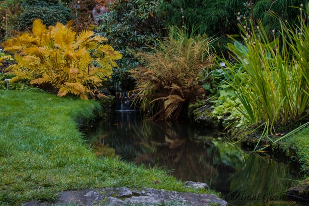 A small waterfall in the Botanical Garden of Oslo