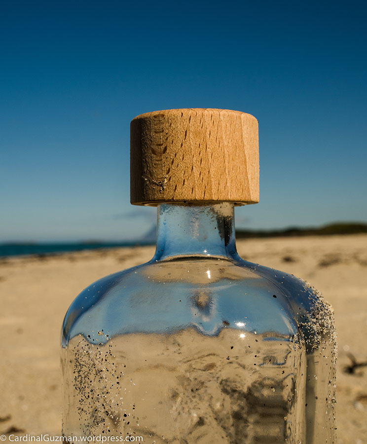 Someone left this empty vodka bottle at the beach.